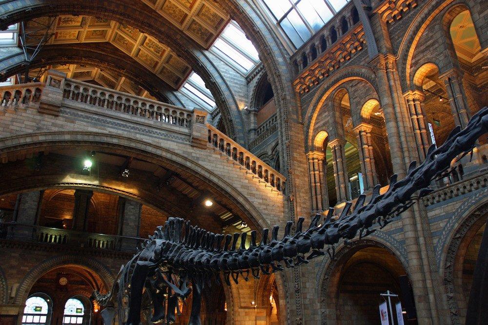 Londres con niños: Natural History Museum