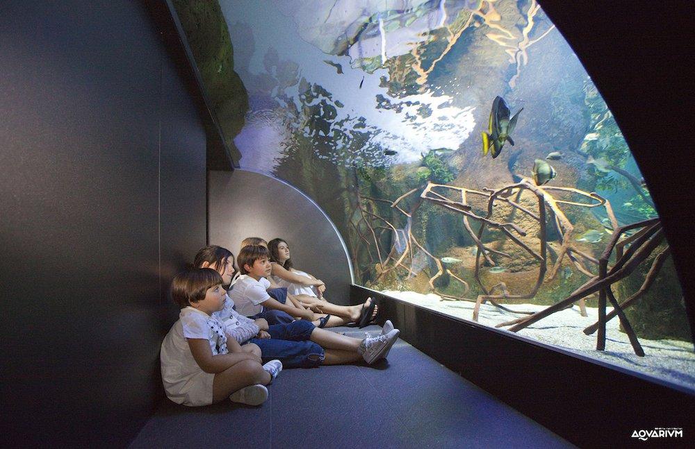 Aquarium Donostia–San Sebastián