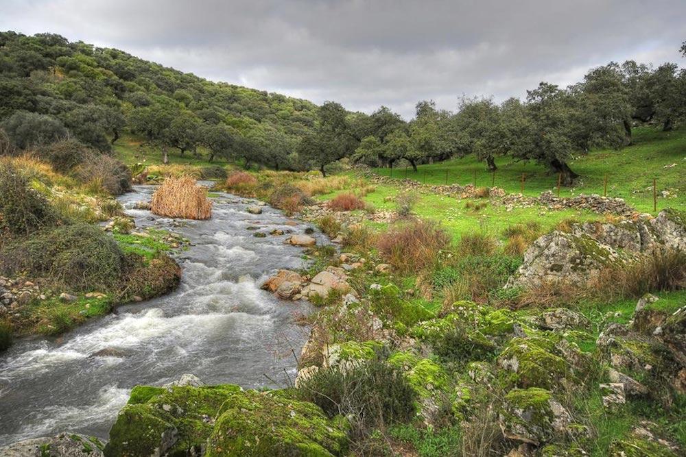 Parque temático natural Alqueva
