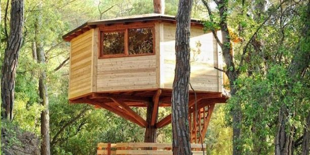 hoteles para niños, cabañas en los árboles