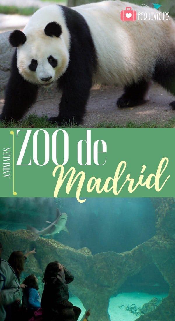 Zoo de Madrid horario
