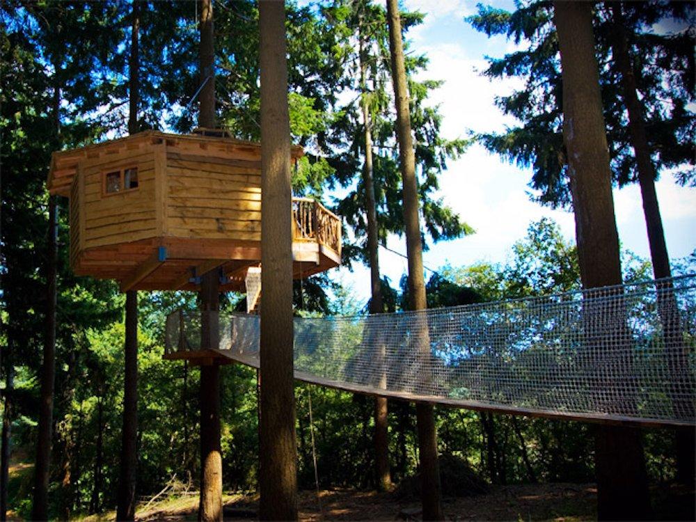 Cabanes al arbres reservas
